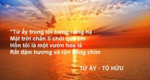 phan tich bai tho tu ay cua tac gia to huu 310x165 - Phân tích bài thơ Từ ấy của tác giả Tố Hữu